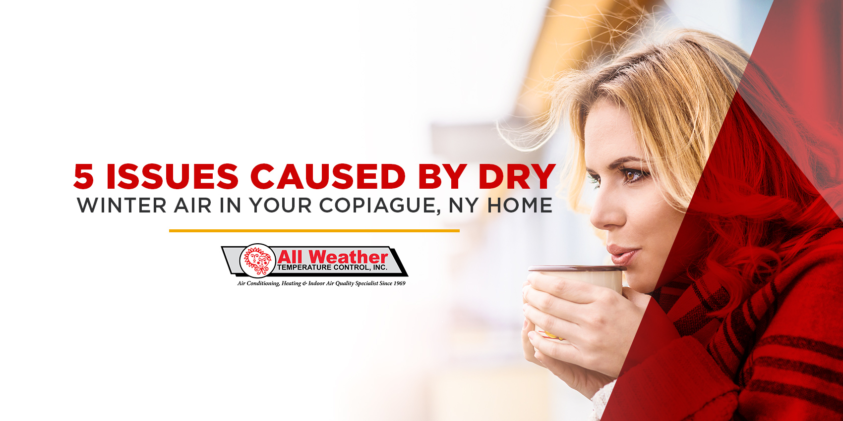 5 Issues Caused by Dry Winter Air in Your Copiague, NY Home